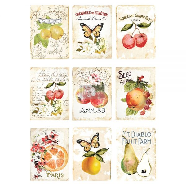 """Redesign Décor Transfers® - Sweet Apricot 22""""x 30"""""""