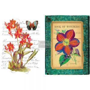 """Redesign Décor Transfers® - Wondrous Flora 22""""x 32"""""""