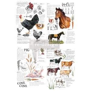 "Redesign Decor Transfers® - Farm Life - total sheet size 24""x35"", cut into 2 sheets"